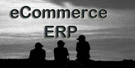 eCommerceERPe_medium